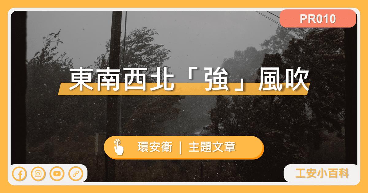 東南西北「強」風吹(網站預覽圖)